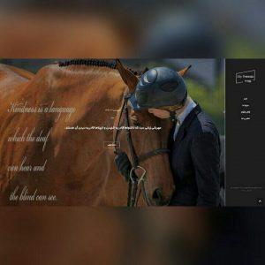 طراحی وب سایت مای فریزیا