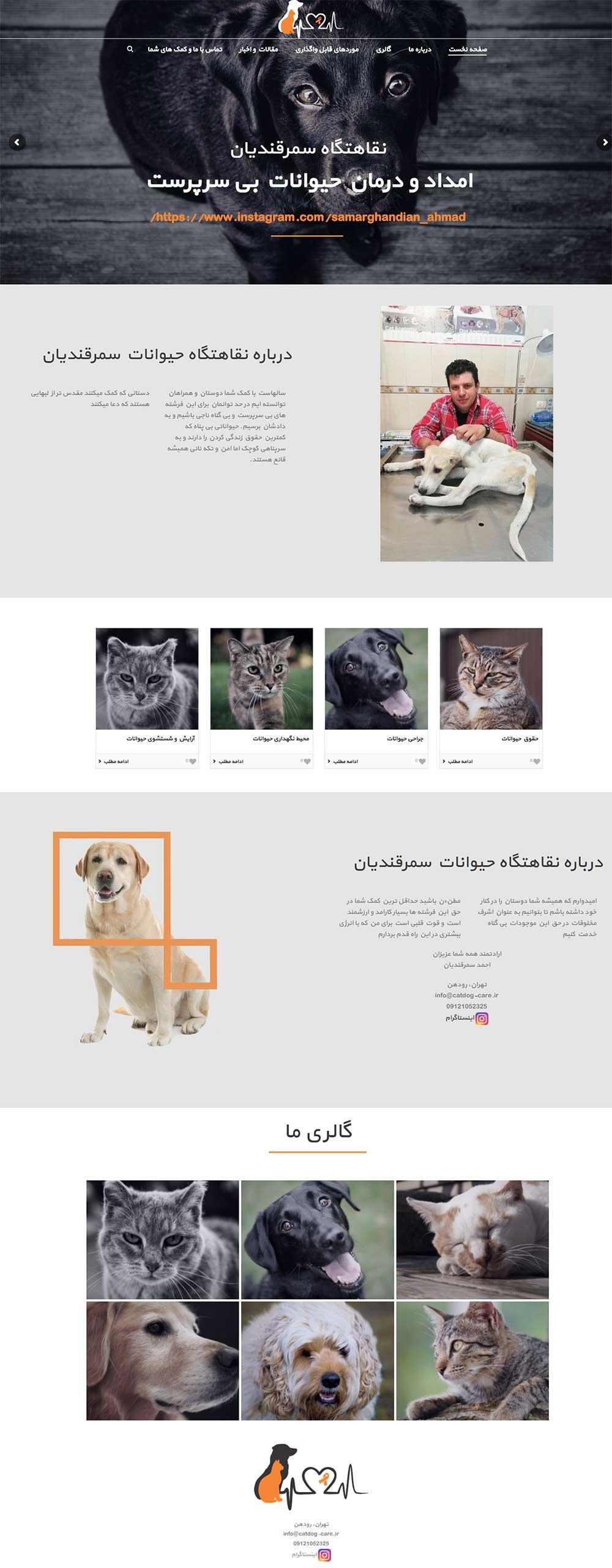 طراحی سایت حمایتی
