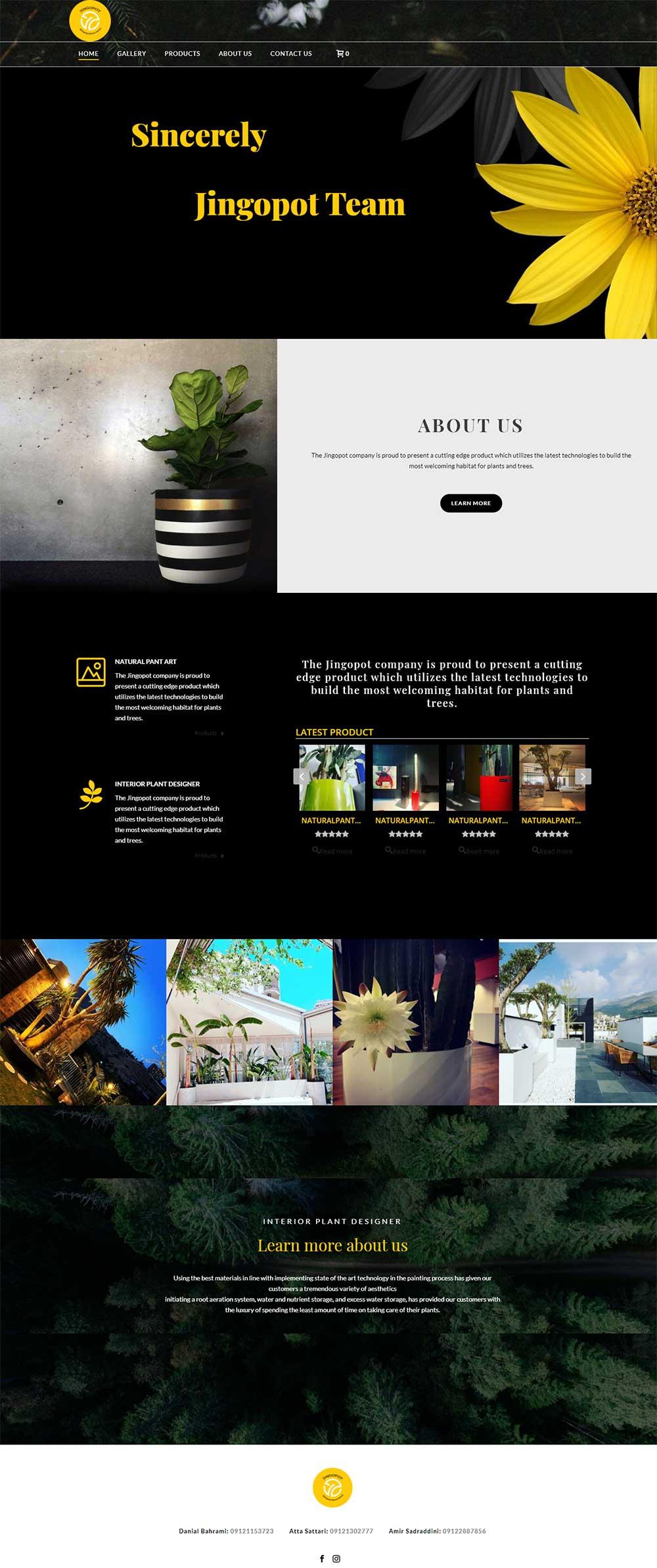 طراحی وب سایت انگلیسی