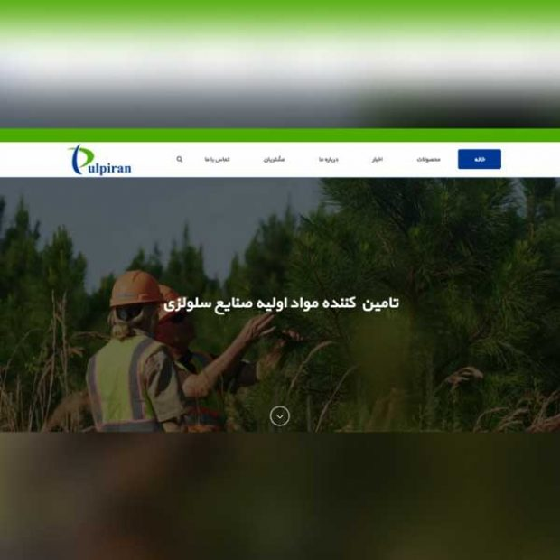 طراحی سایت صنعتی پالپ ایران