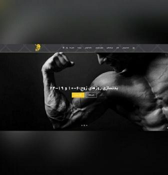 طراحی سایت شرکتی مجموعه ورزشی لئو