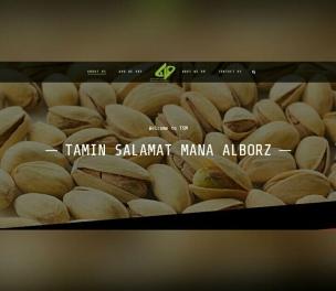 طراحی وب سایت تامین سلامت مانا البرز