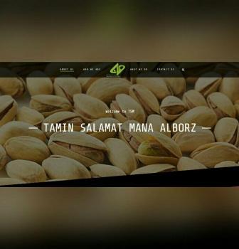 طراحی سایت شرکتی تامین سلامت مانا البرز