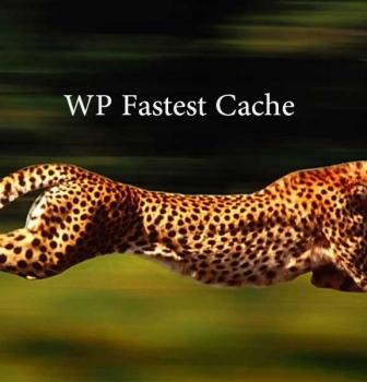 بهینه سازی سایت با WP Fastest Cache
